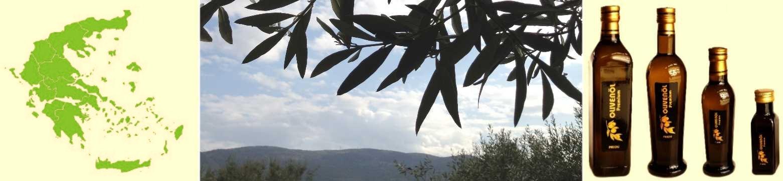 Flaschen Oliven Flaschen